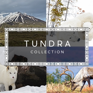 Tundra Collection