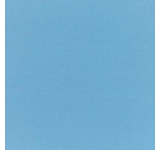 SUNBRELLA SKY BLUE CANVAS